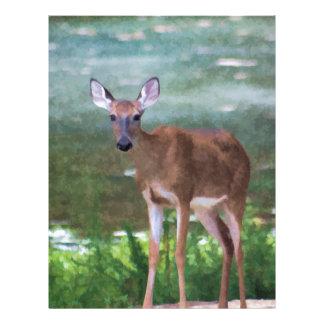 Alabama Whitetail Deer Female Letterhead