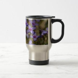 Alabama Wildflower Tiny Bluet - Houstonia pusilla Travel Mug