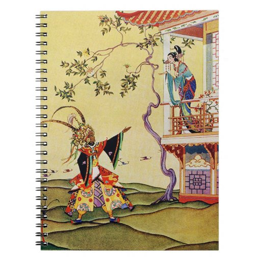 Aladdin Woos the Princess Note Books