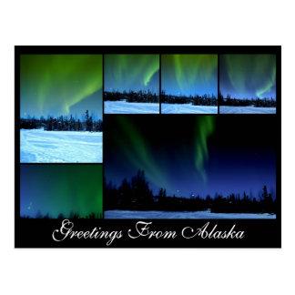 Alaksa Aurora Collage Postcard
