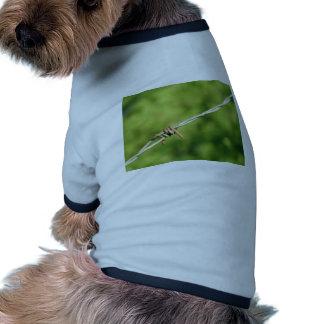 Alambre de púas, de púas, alambre, cercando camisetas mascota