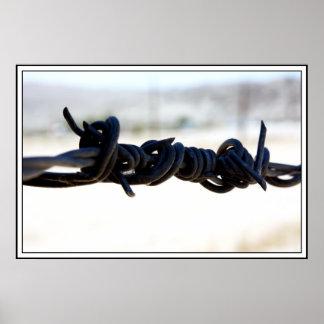 Alambre de púas del desierto póster