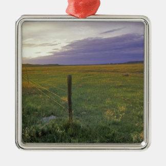 Alambre de púas Fenceline en Montana del noreste Adornos De Navidad