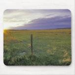 Alambre de púas Fenceline en Montana del noreste Tapete De Ratones