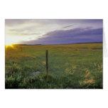 Alambre de púas Fenceline en Montana del noreste Tarjeton
