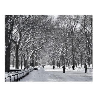 Alameda B&W del Central Park Tarjetas Postales