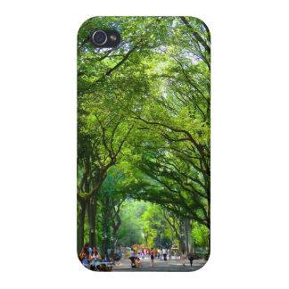 Alameda del parque de Cenral iPhone 4 Protectores