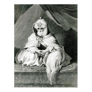 Alameen Ben Mohammed Postcard