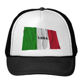 Alamo Flag Mesh Hats