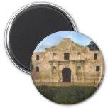 Alamo Lawn Fridge Magnet