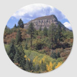 Álamos tembloses, Colorado Rockies Etiqueta Redonda