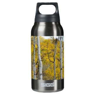 Álamos tembloses del otoño botella isotérmica de agua