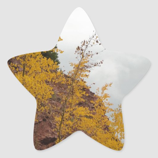 álamos tembloses del paso del boreas calcomanías forma de estrellas