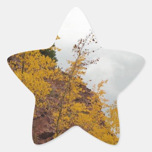 álamos tembloses del paso del boreas calcomanía forma de estrellae