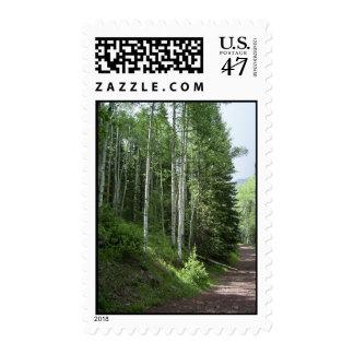 Álamos tembloses en el rastro sello postal