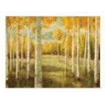 Álamos tembloses en otoño tarjetas postales