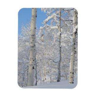 Álamos tembloses nevados, Beartrap-Desolación Imán Flexible