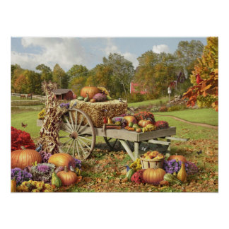 "Alan Giana ""Autumn Treasures"" Poster"