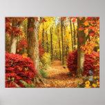 """Alan Giana """"Autumn Woods"""" Poster"""