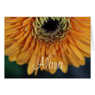 Alana Orange Flower Name Greeting Card