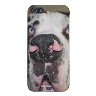 Alano Cover For iPhone SE/5/5s
