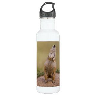 Alarm Stainless Steel Water Bottle