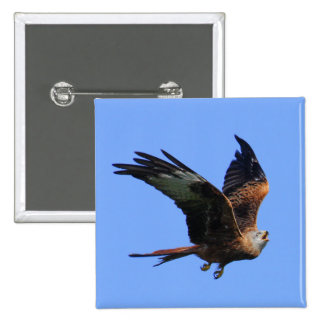 Alarmed Red Kite Pinback Button
