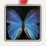 Alas azules iridiscentes de la mariposa adorno de navidad