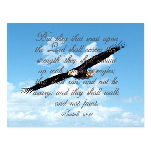 Alas como Eagles, biblia del cristiano del 40:31 Postal