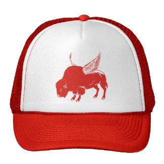 Alas de búfalo gorro