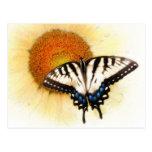Alas de Butterflys, postal