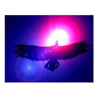 Alas de Eagle - Eagle en vuelo Tarjeta Postal