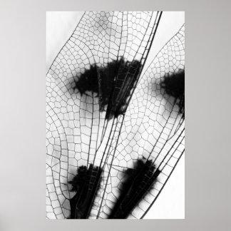 Alas de la libélula póster