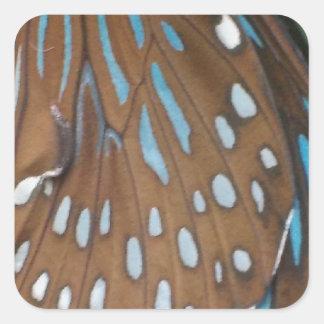 Alas de la mariposa calcomanía cuadradase