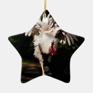 Alas del aleteo del gallo ornamentos para reyes magos