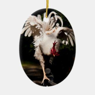 Alas del aleteo del gallo ornamentos de reyes magos