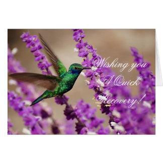Alas del colibrí de los Violeta-oídos el chispear  Felicitación