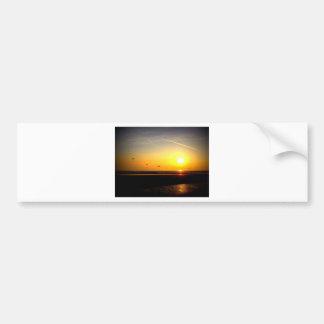 Alas flexibles que disfrutan de la puesta del sol pegatina para auto