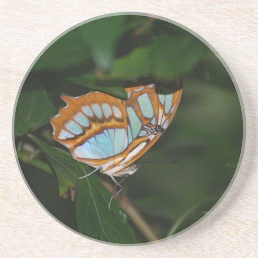 Alas perfectas de la mariposa de Camoflage Posavasos De Arenisca