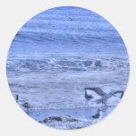 Alas que agitan de la playa una de las gaviotas de pegatina redonda