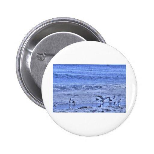 Alas que agitan de la playa una de las gaviotas de pin