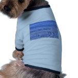 Alas que agitan de la playa una de las gaviotas de camisetas de perro