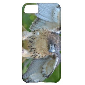 alas Rojo-atadas de la extensión del halcón