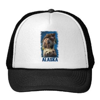 Alaska - Alaska Bear.png Gorro