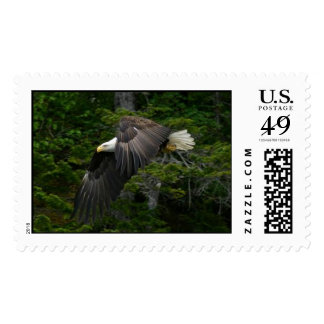 Alaska Bald Eagle Postage