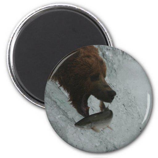 Alaska Bear catching salmon 2 Inch Round Magnet