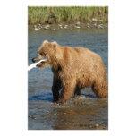 Alaska Bear Stationery