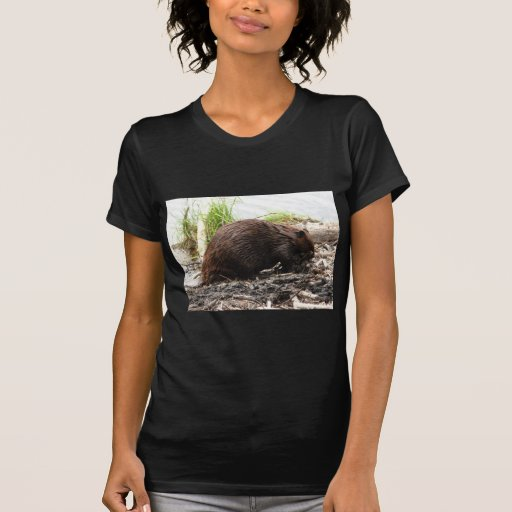 Alaska Beaver T-Shirt