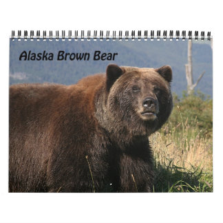 Alaska Brown Bear Calendar 2012