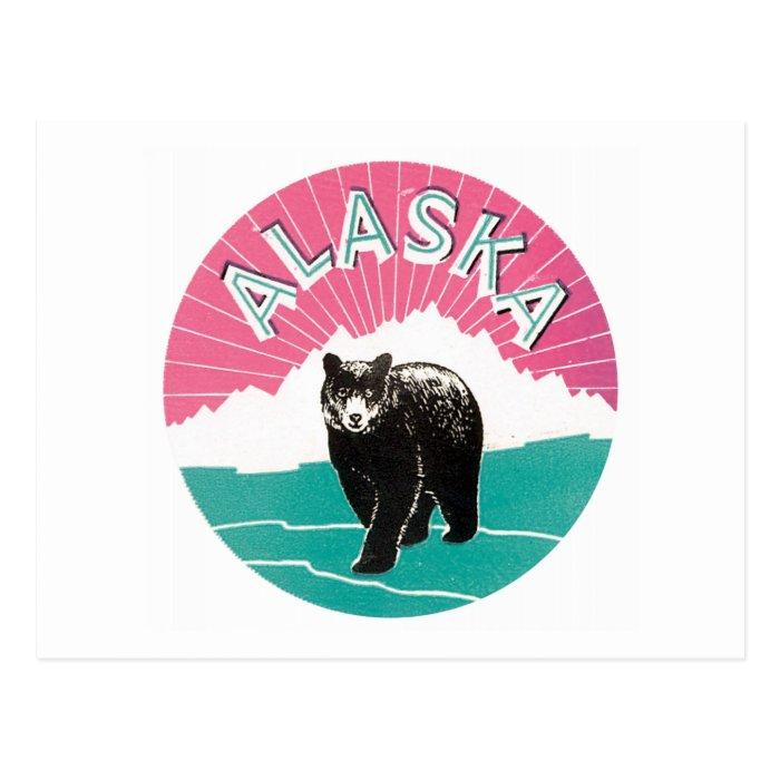 Alaska Brown Bear Postcard
